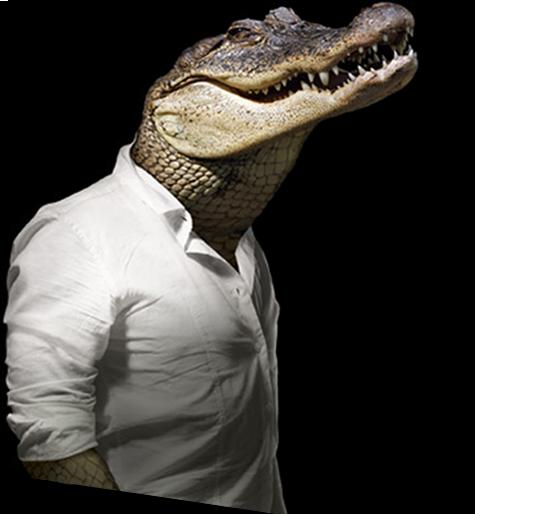 home-krokodil