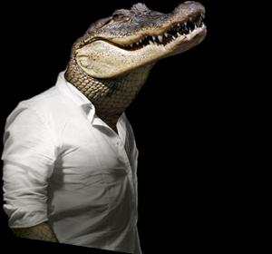 home-krokodil-300x280